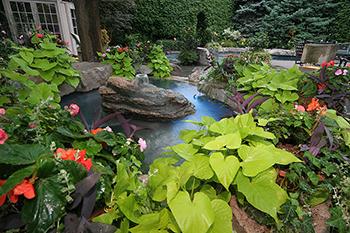 avalon landscaping gardens